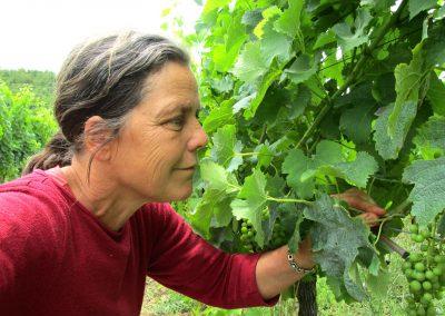 Ulrike Hoppenstedt dans les vignes