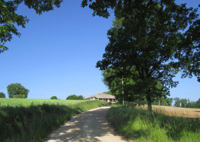 Domaine-Maillac-galerie-entree-domaine-chemin