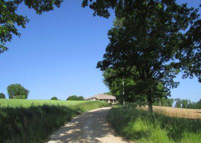 Chemin menant au Domaine de Maillac à partir de la route de Vaissac