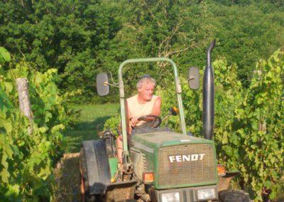 Roland travaille dans les vignes